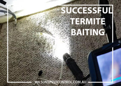 Pest Control Blacktown - Baiting of Termites 100% Success Rate