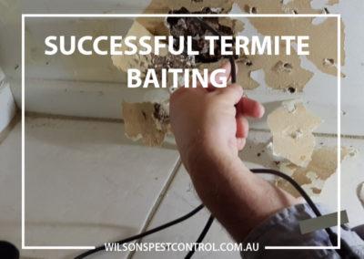 Pest Control Blacktown - Termite Baiting Success