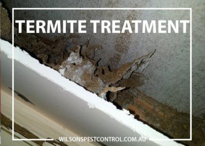 Pest Control Blacktown - Termite Treatment Wall