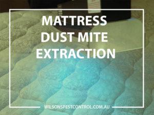 Dust Mite Extraction Pest Control Blacktown, Sydney, Holroyd