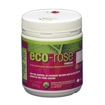 Eco Rose