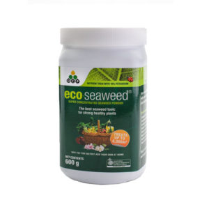 Eco Seaweed by OCP