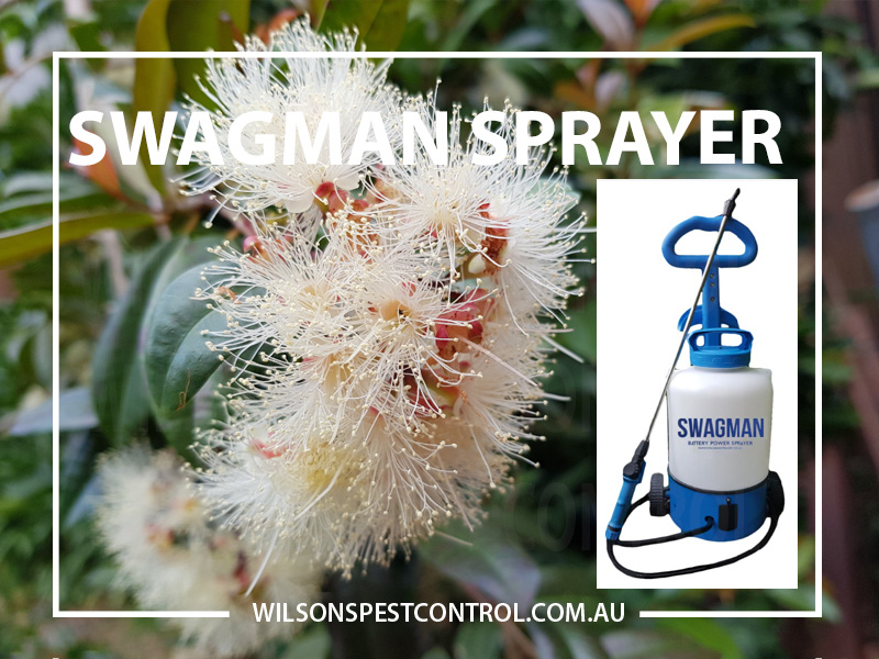 Swagman Electric Garden Sprayer