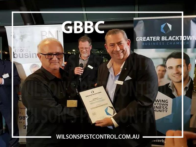 GBBC Don Wilson