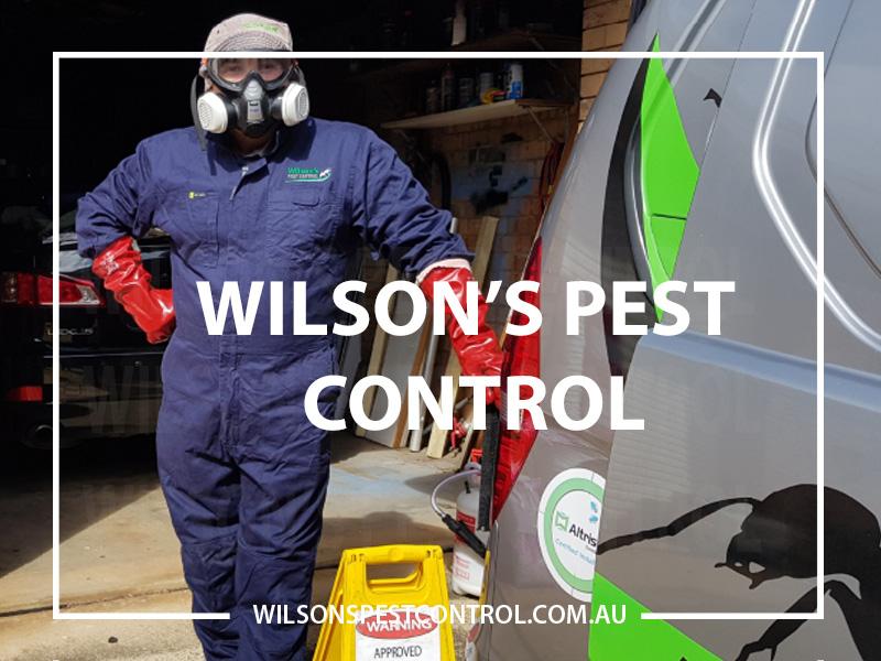 PPE Pest Control