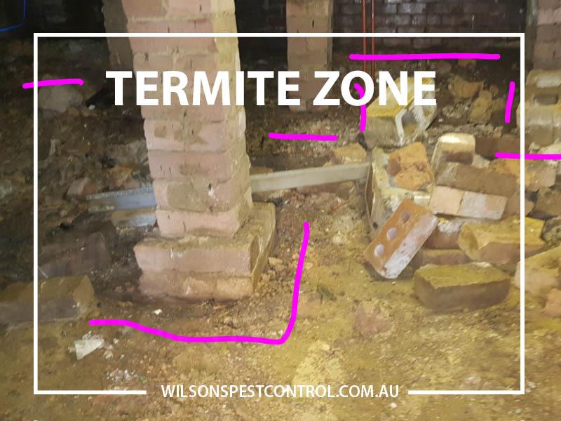 Termite Zone - Termite Treatments Termite Baiting Residential homes