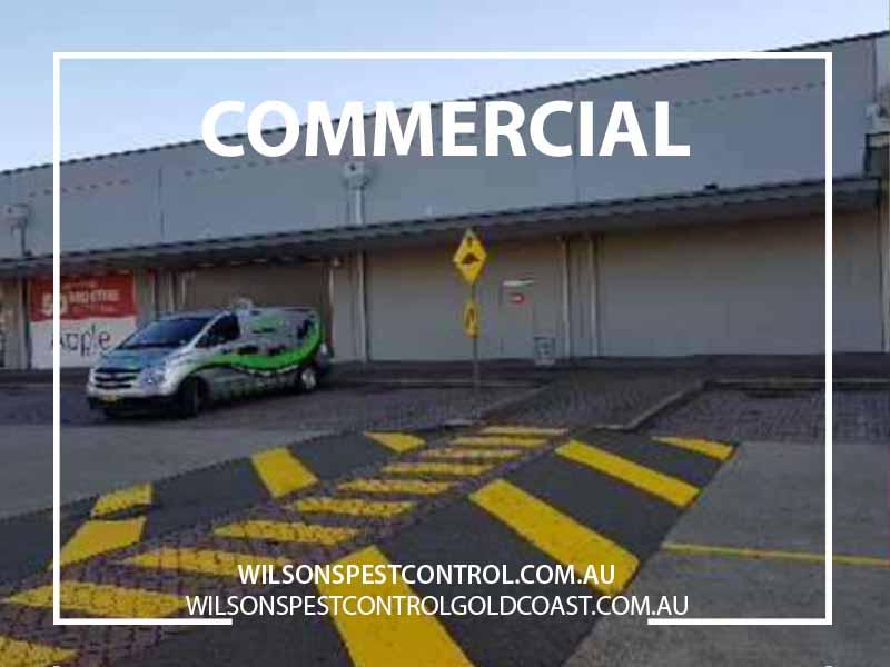 Western Sydney Commercial Pest Control, Blacktown & Holroyd