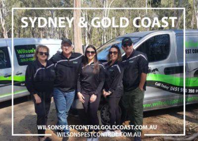 Wilsons Pest Control Western Sydney & Gold Coast