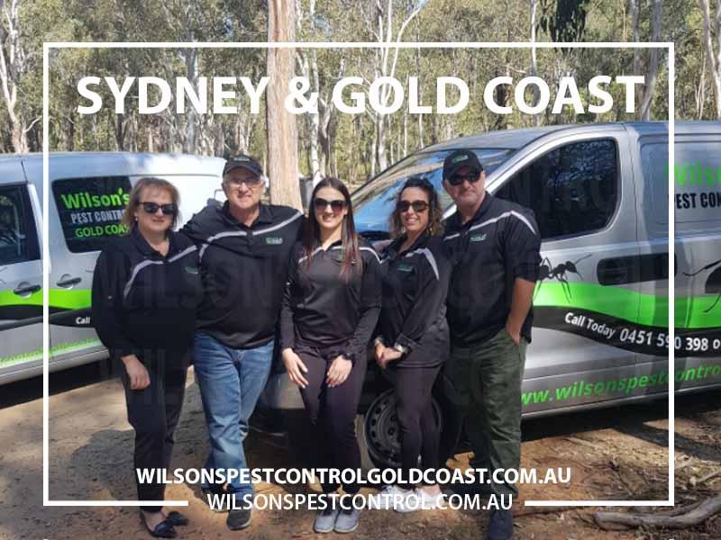 Wilsons Pest Control Western Sydney, Blacktown & Holroyd