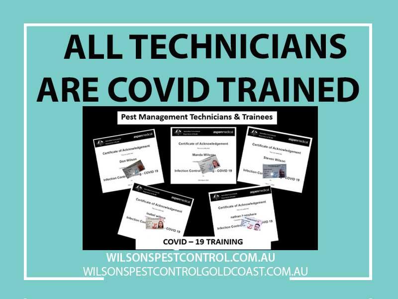 Covid 19 Pest Control