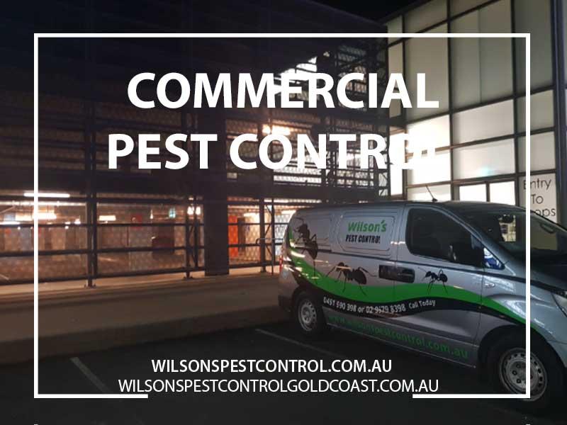 Commercial Pest Control, Commercial Pest Control Western Sydney Penrith Blacktown