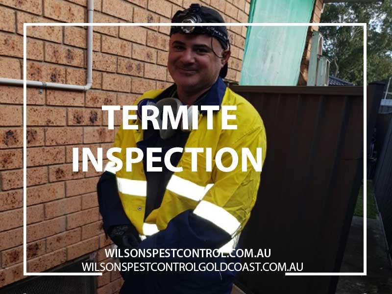 Pest Control Termite Inspections Blacktown Castle Hill Penrith