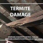 Wilsons Pest Control Termite Blacktown & Holroyd