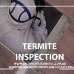 Wilsons Pest Control Termite Inspection Sub Floor, Blacktown & Holroyd